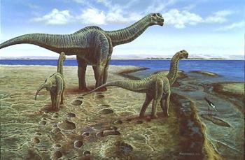 Палеонтологи определили температуру динозавра по зубам