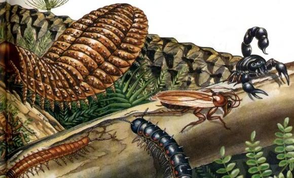 Что породило древних гигантских насекомых?