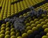 Создан молекулярный «электромобиль»