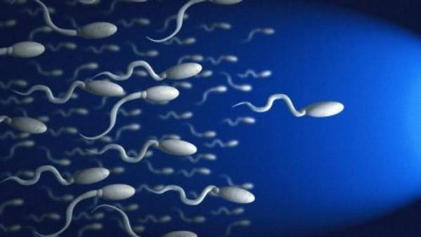 chto-takoe-malaya-podvizhnost-spermatozoidov