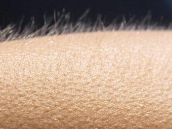 """Гусиная кожа – """"детектор лжи"""" для наших эмоций?"""
