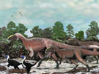 Динозавры в перьях: найдены останки пернатых тираннозавров
