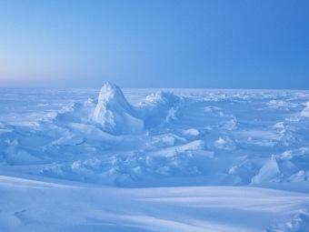 Изучено «глобальное похолодание» середины мелового периода