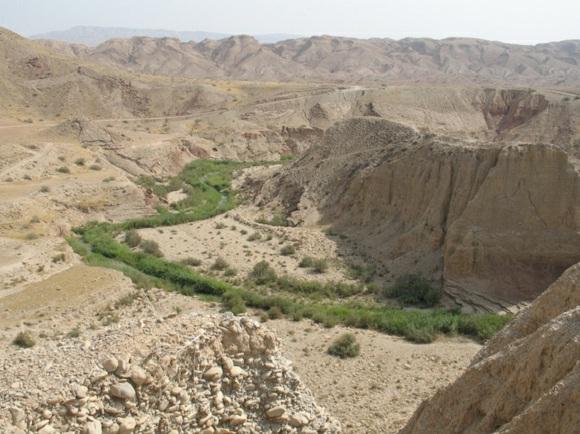 Земледелие появилось одновременно в нескольких местах - свидетельства из Ирана