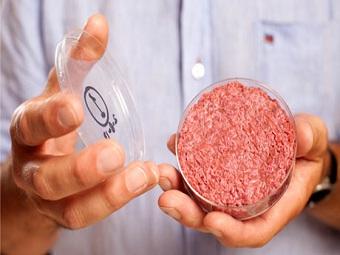 http://nauka21vek.ru/wp-content/uploads/2013/08/burger.jpg