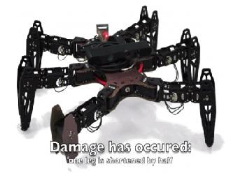 Роботы научились двигаться даже после «тяжелых ранений»