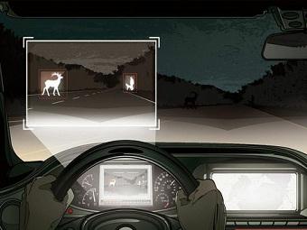 Система Night View Plus не даст машинам врезаться в животных