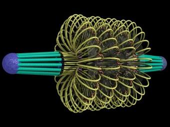 Машина митоза: кинетохоры, микротрубочки и хромосомные насосы