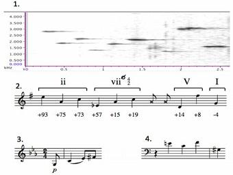 Поразительное сходство трелей крапивника и классической музыки
