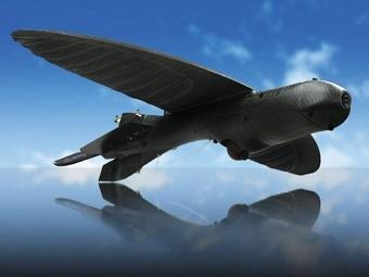 Новый боевой беспилотник маскируется под птицу