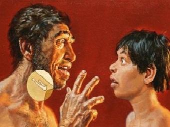 Томография подъязычной кости доказала: неандертальцы разговаривали не хуже нас