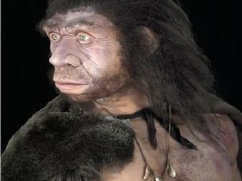 «Ген риска диабета» мы тоже получили от неандертальцев