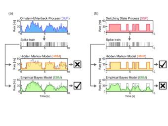 Разгадка нейронного кода: цифровой или аналоговый сигнал?