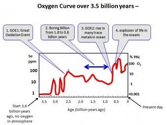 Почему эволюция почти остановилась на целый миллиард лет?