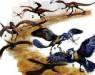 Полет появился раньше птиц: как и почему?