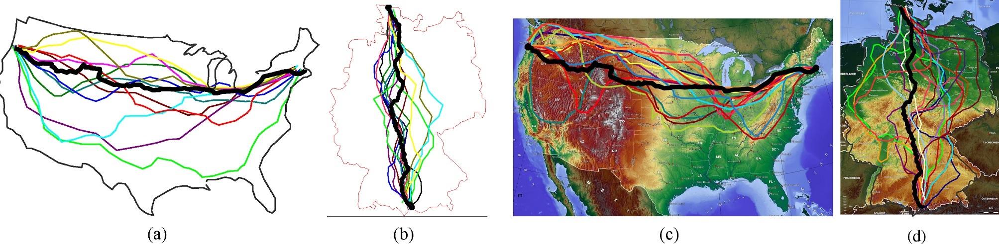 Слизневики - для расчета оптимальных маршрутов и биокомпьютеров будущего