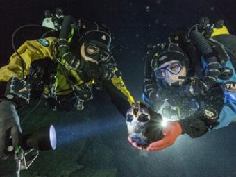 Найден самый древний, генетически неповрежденный скелет человека